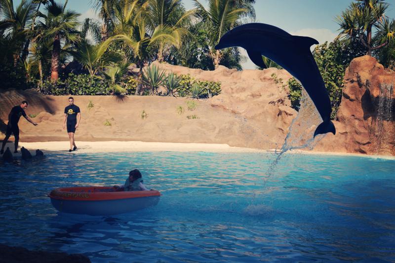 Delfiinid meeldisid kõige rohkem. Kuigi peale Pingviine olid kõik mereelukad Pingud.